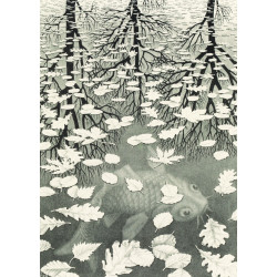 MC ESCHER - THREE WORLDS