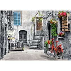 CHARMING ALLEY WITH REB BICYCLE