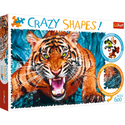 FACING A TIGER, CRAZY SHAPES